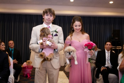 Puppies in the wedding party Couture Pink Ombre Bridal Gown South Florida Wedding Photographer Lighthouse Point Yacht Club wedding photographer