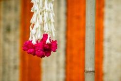 Fun New Delhi Wedding Near Lodhi Gardens India