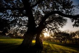elizabeth-birdsong-photography-austin-engagement-photography-old-settlers-park-14