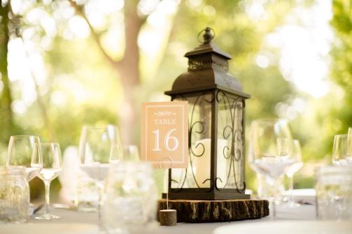 @PhotographerAmy Austin Wedding Photographer Umlauf Sculpture Garden Wedding Photos-50