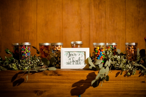 @PhotographerAmy Elizabeth Birdsong Photography Oak Meadow Ranch Wedding Photos-125