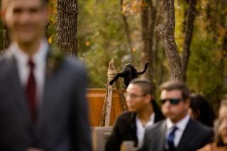 @PhotographerAmy Elizabeth Birdsong Photography Oak Meadow Ranch Wedding Photos-32