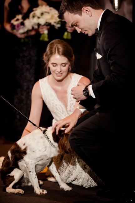 Puppy ring bearer Rainey Street Austin Wedding at Hotel Van Zandt Made with Magmod