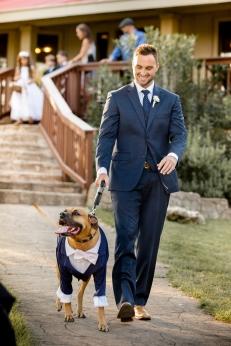 @PhotographerAmy Elizabeth Birdsong Photography Kindred Oaks Wedding Photos Austin Venue-32