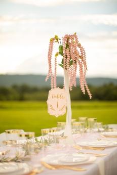 @PhotographerAmy Elizabeth Birdsong Photography Purcellville Virginia wedding venue National Cathedral Wedding photos-157