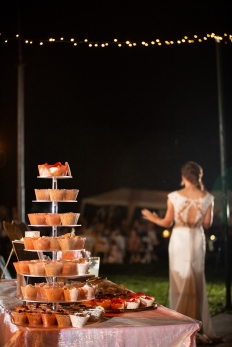 @PhotographerAmy Elizabeth Birdsong Photography Purcellville Virginia wedding venue National Cathedral Wedding photos-201