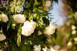 @ Photographer Amy Elizabeth Birdsong Photography Rancho Mirando Austin Texas wedding venue photos-28