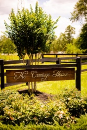 @ Photographer Amy Elizabeth Birdsong Photography The Carriage House Houston Wedding Photos-1