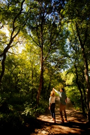 @ Photographer Amy Elizabeth Birdsong Photography Zilker Botanical Gardens Engagement Photos Zilker Park Austin-12