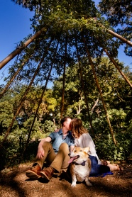 @ Photographer Amy Elizabeth Birdsong Photography Zilker Botanical Gardens Engagement Photos Zilker Park Austin-3