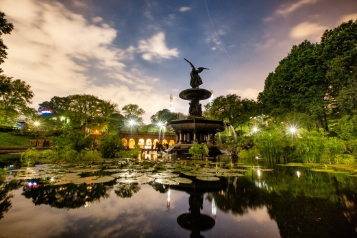 PhotographerAmy Elizabeth Birdsong Photography Bethesda Fountain Proposal NYC Photos-29