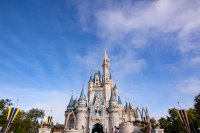 @ Photographer Amy Elizabeth Birdsong Photography Disney World Engagement Photos -1