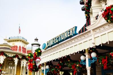 @ Photographer Amy Elizabeth Birdsong Photography Disney World Engagement Photos -3