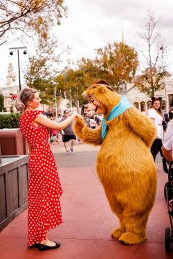 @ Photographer Amy Elizabeth Birdsong Photography Disney World Engagement Photos -43
