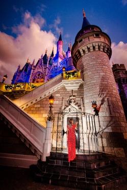 Best spot of Cinderella's castle